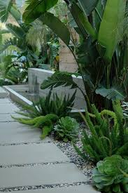 Small Picture Contemporary concrete water feature softened with big leafy green
