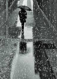 Resultado de imagen para hojas mojadas por la lluvia