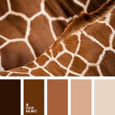 <b>монохромная</b> коричневая палитра | IN COLOR BALANCE
