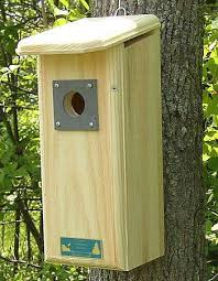 Woodpecker Houses  Flicker Houses  Nest Boxes For Woodpeckers    Conservation Downy Woodpecker House