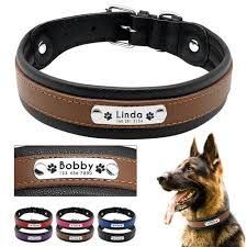 Custom <b>Dog Collar</b> – Gifts Engraved