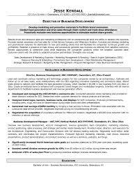 center director resume   sales   director   lewesmrsample resume  call center director resume of business
