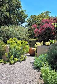 Small Picture 188 best Australia garden images on Pinterest