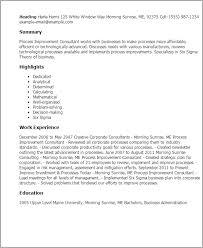 professional process improvement consultant templates to showcase    resume templates  process improvement consultant