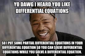 Yo Dawg i heard you like differential equations so I put some ... via Relatably.com
