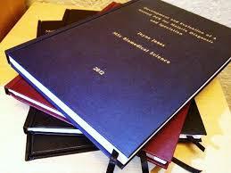 Phd dissertation usc daniela baroffio   dradgeeport    web fc  com Book Report     Pages  gt  gt  Daniela baroffio phd dissertation usc