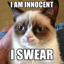 I am innocent I swear - Grumpy Cat Smile | Meme Generator via Relatably.com