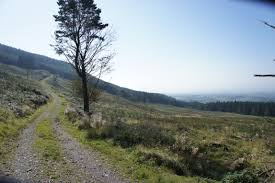 Image result for cooley co louth pics