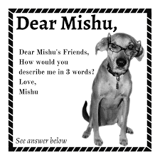 mishu in her followers words dear mishu live life happy mishu in her followers words dear mishu live life happy and bold
