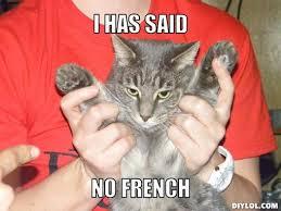 Mad Lol Cat Meme Generator - DIY LOL via Relatably.com