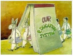 essay on education system needs serious reforms   homework for you  essay on education system needs serious reforms   image