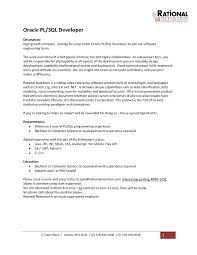 doc 9271200 web service developer resume bizdoska com now