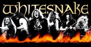 Home - <b>Whitesnake</b> Official Site