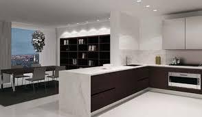 kitchen ideas pictures modern
