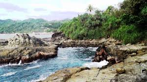 Image result for pantai wedi ombo