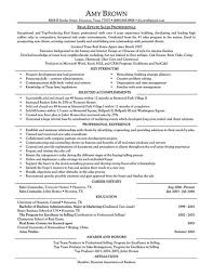 resume travel agent objective resume examples sample resume for junior travel consultant resume