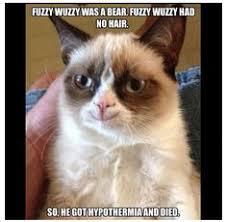 Grumpy cat on Pinterest | Grumpy Cat Meme, Grumpy Cat Humor and ... via Relatably.com