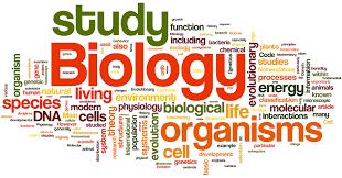 Image result for biology clipart