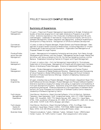 8 project overview statement example case statement 2017 project overview statement example resume overview statement resume resume overview examples it resume summary statement it resume summary it resume png