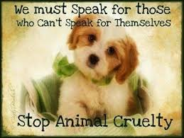 Stop Animal Cruelty Pictures, Photos, and Images for Facebook ...