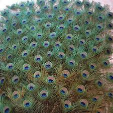 Выгодная цена на <b>feather</b> vase — суперскидки на <b>feather</b> vase ...