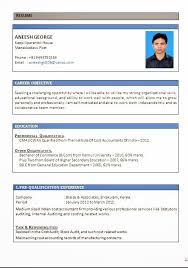 biodata resumeprofessional resume formats      download resume format