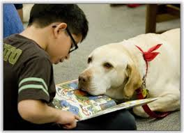 Image result for dog kid reading