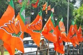 தீவிரம் அடையும் பாஜகவின் டெல்லி சட்டசபை தேர்தல் பிரச்சாரம்