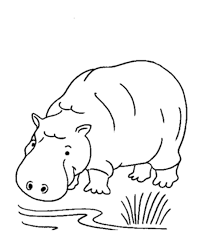 Small Picture Free Printable Hippo Coloring Pages For Kids