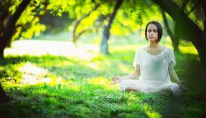healthy mind in a healthy body essay a healthy mind is a healthy body essay