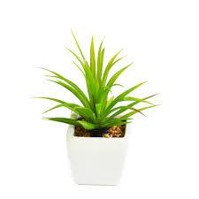 <b>Растение искусственное GREEN BELT</b> Суккулент Тилландсия ...
