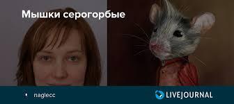 <b>Мышки</b> серогорбые: naglecc — LiveJournal