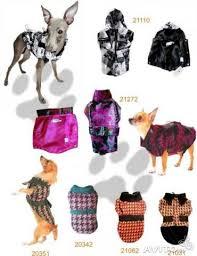 <b>Одежда</b> для животных <b>кошек и</b> собак - Животные, Товары для ...