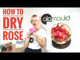 HOW TO DRY ROSE IN <b>SILICA GEL</b>. 3D Resin Art! Alamould <b>Moulds</b>