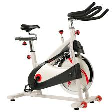 Clipless Pedal Premium Indoor Cycling <b>Exercise Bike with Belt</b> Drive