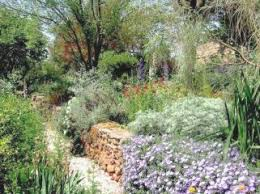 Small Picture Mediterranean Garden Society About the MGS