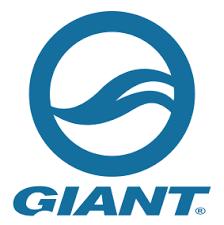Resultado de imagem para giant logo