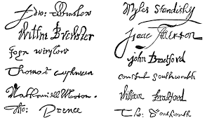 pondering principles flower compact signatures