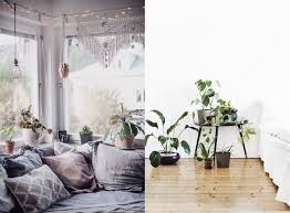 style home decor plants