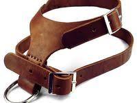 79 лучших изображений доски «LeatherDog-<b>collar</b>»   Одежда для ...