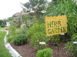 Small Picture How To Use Herbs In The Landscape HGTV