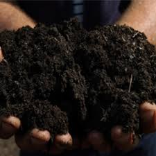 Image result for free compost