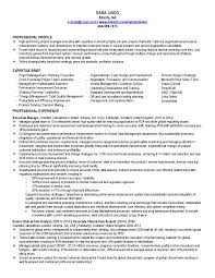 resume examples data analyst resume keywords research analyst resume examples resume template data analyst cv sample qhtypm resume examples data data