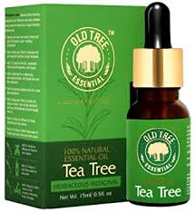Buy Old Tree <b>Tea Tree Essential</b> Oil for Skin, Hair and Acne Care 15 ...
