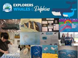 Children <b>have a whale of</b> a time learning about whales and dolphins ...
