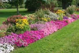 Image result for flower bed ideas