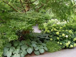 Small Picture Shade Garden Design Markcastroco