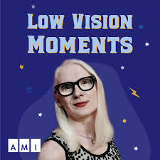 Low Vision Moments