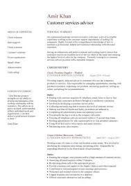 Customer services advisor CV sample  excellent communication skills  excellent customer service