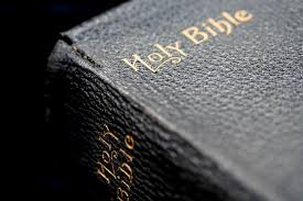 Image result for bible public domain